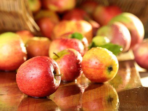 manzana-encurtida