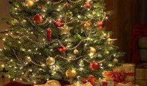 origen de la tradición del árbol de Navidad