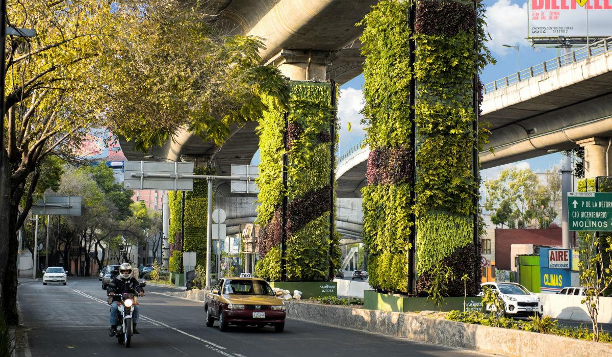 V a verde un jard n vertical en cdmx for Proyecto jardines verticales