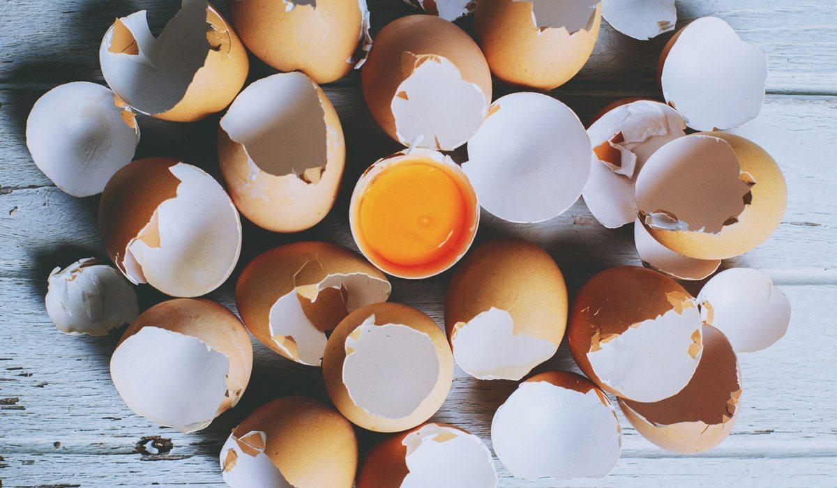 El cabello crecer huevo de cascara hacer para