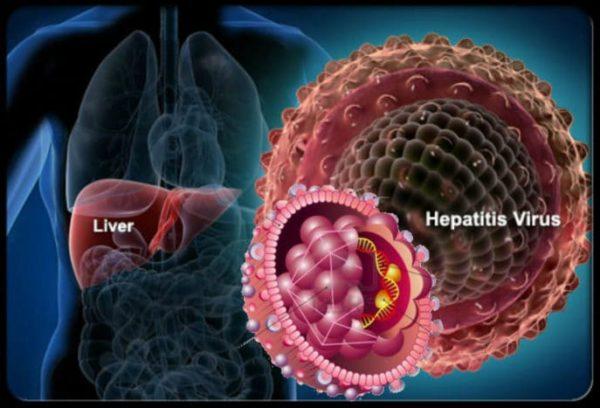 Nueva estrategia para hacer frente a la hepatitis B y C