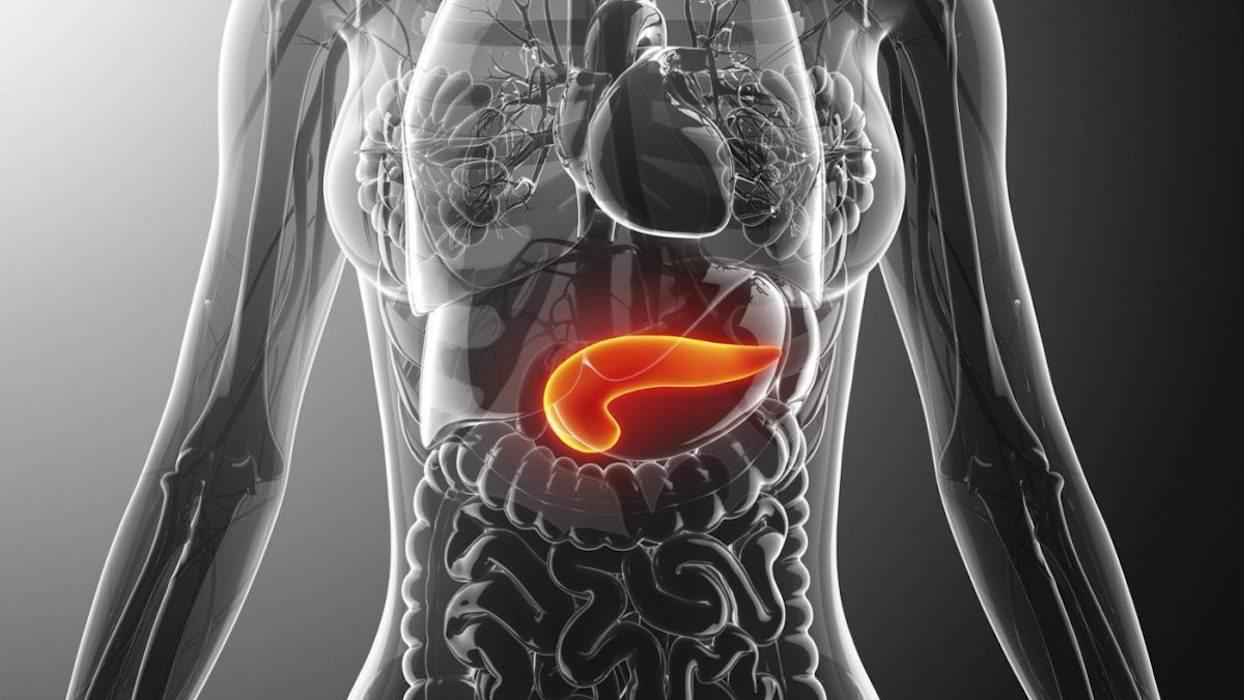 Tratamiento-pancreatitis-port-sele