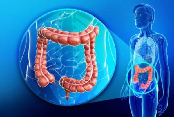 Males gastrointestinales por exceso de ejercicio-sele