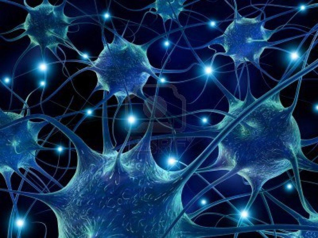 congelación cerebral7
