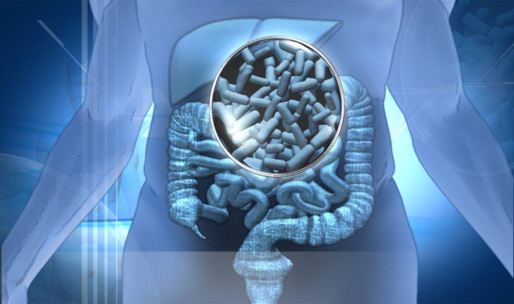 Probiótico LGG6