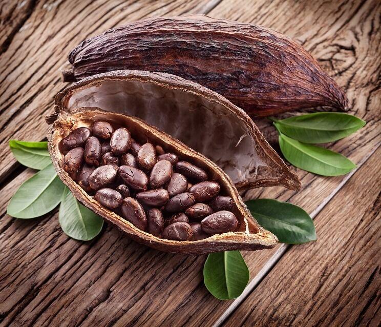 El legado del cacao