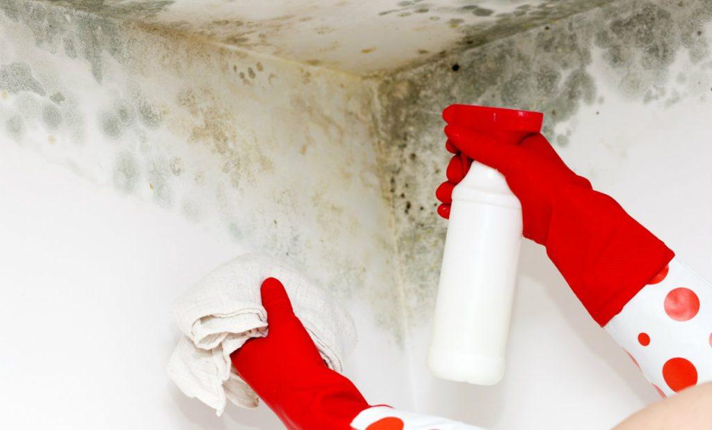 manchas de humedad en paredes