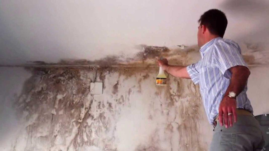 15 tips para quitar manchas de humedad en paredes - Manchas humedad pared ...