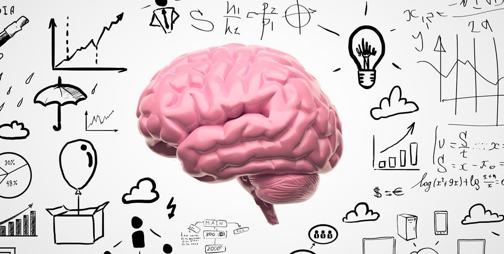 piezas clave de tu inteligencia