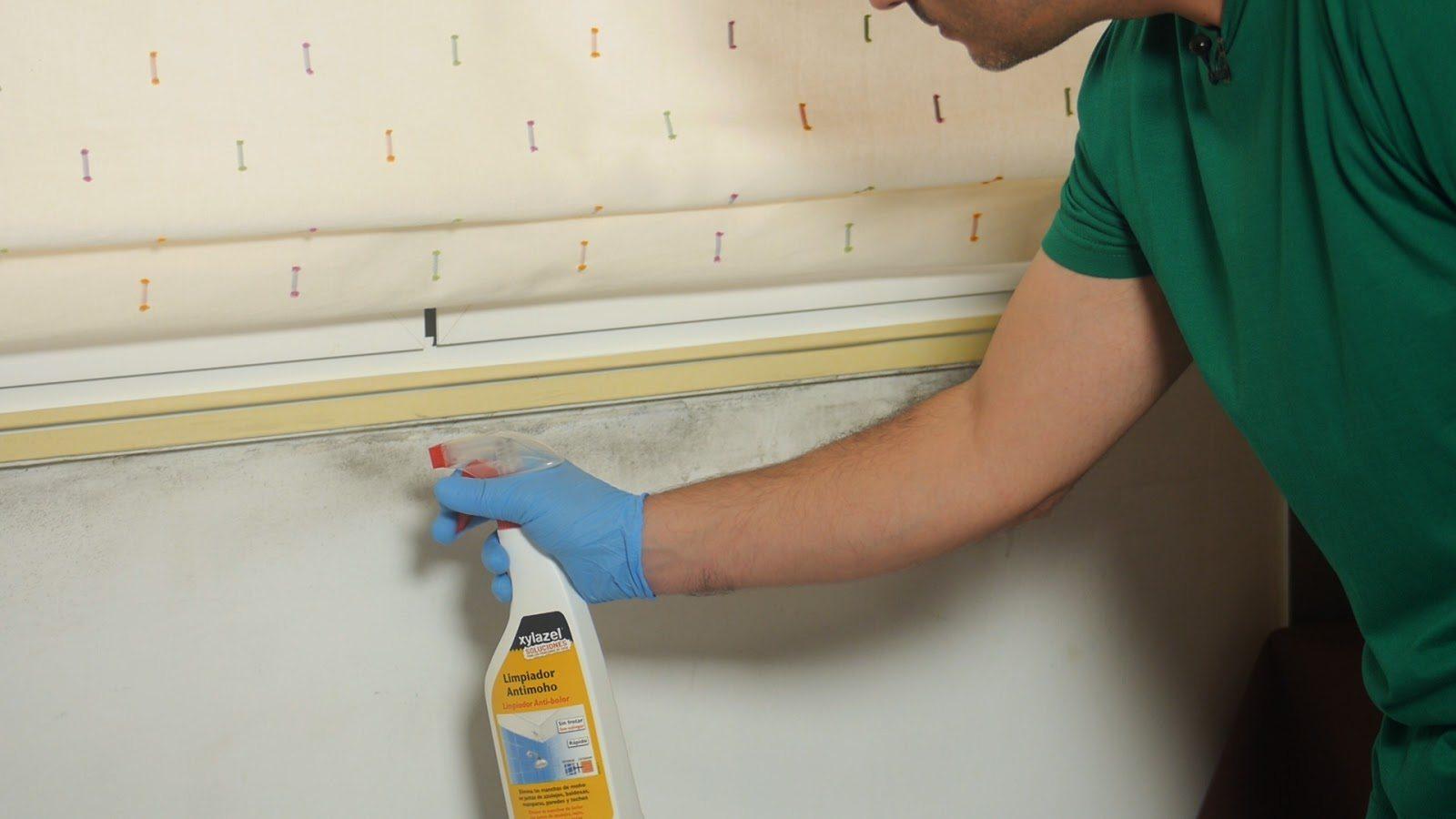 Quitar manchas humedad pared free quitar manchas de la - Quitar humedad pared ...