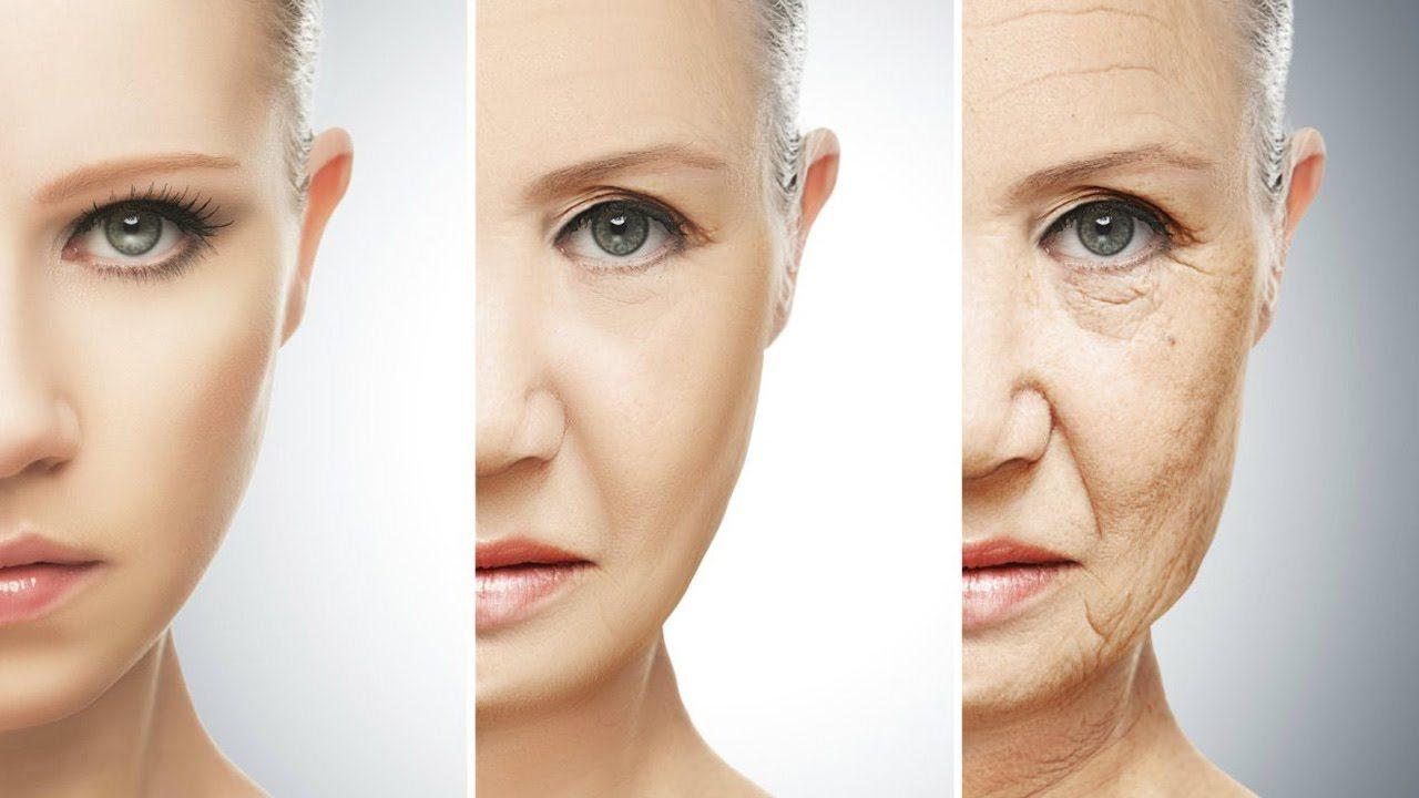 telómeros al envejecimiento