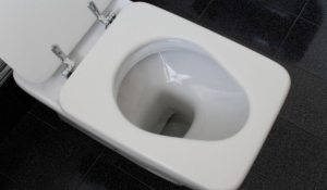 ¿en dónde tirar el papel de baño?