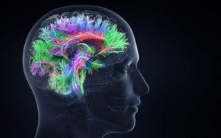 mejora tu memoria
