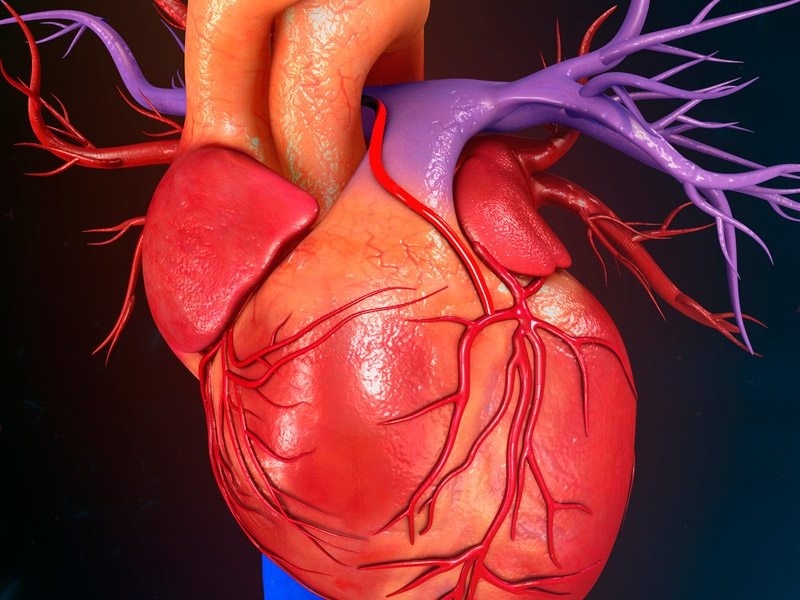 Como saber si tienes alguna enfermedad en el corazon