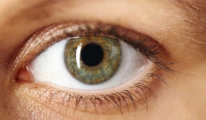 tus ojos indican si eres competitivo