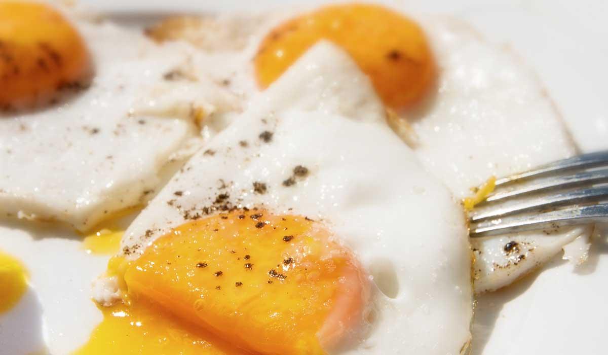 Es falso que comer huevo eleva tu colesterol