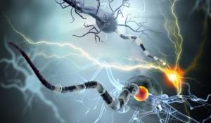 datos sobre la esclerosis multiple