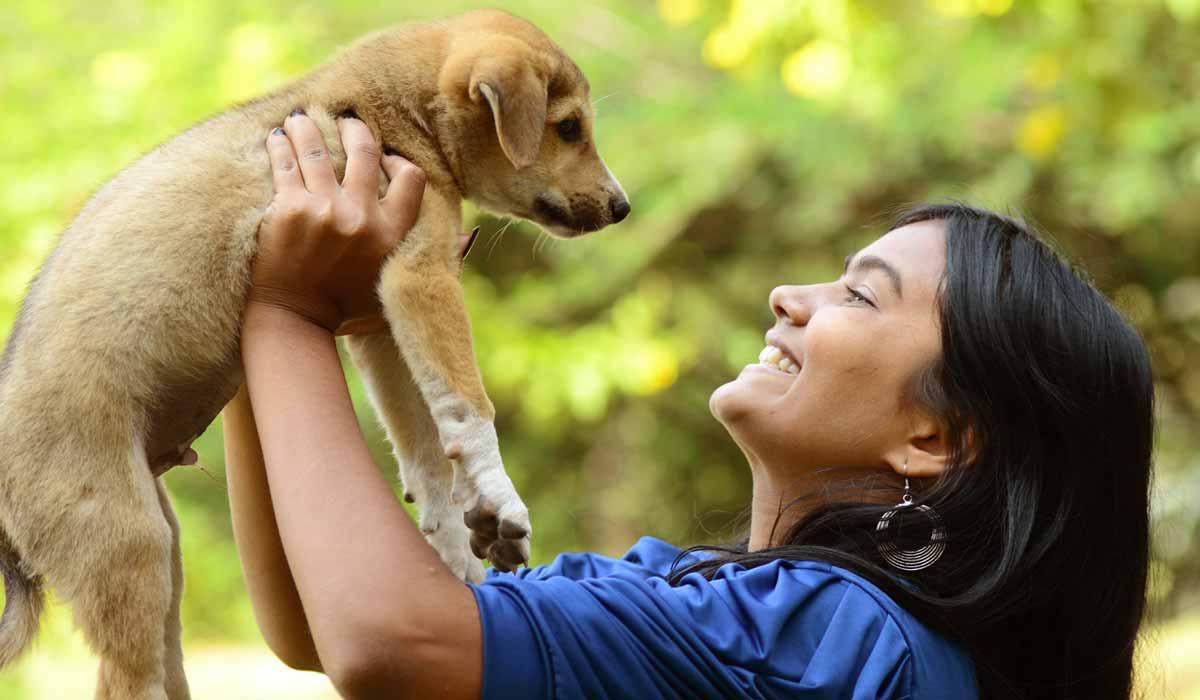 Reglas básicas que debes de seguir si rescatas un animal