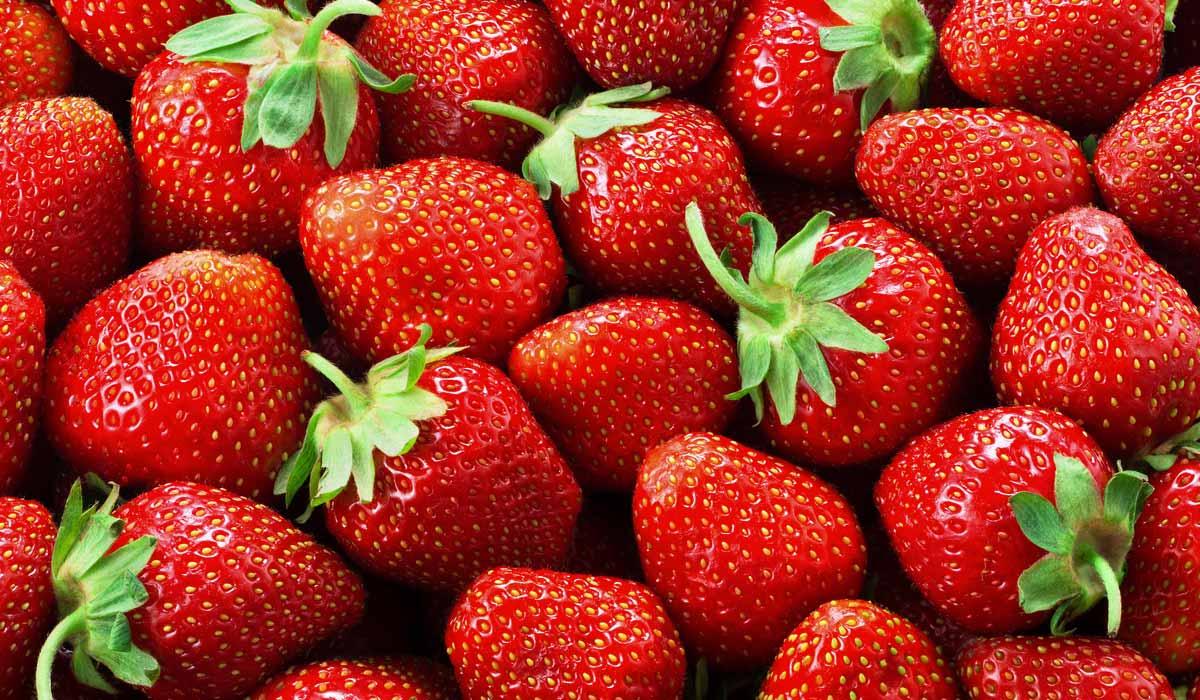 Resultado de imagen para fresas