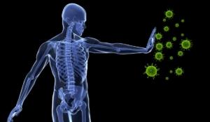 evita debilitar tus sistema inmunitario