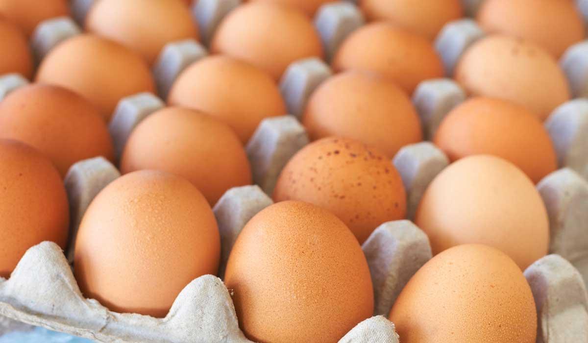 huevo contra la diabetes