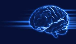 ejercicios para tu cerebro