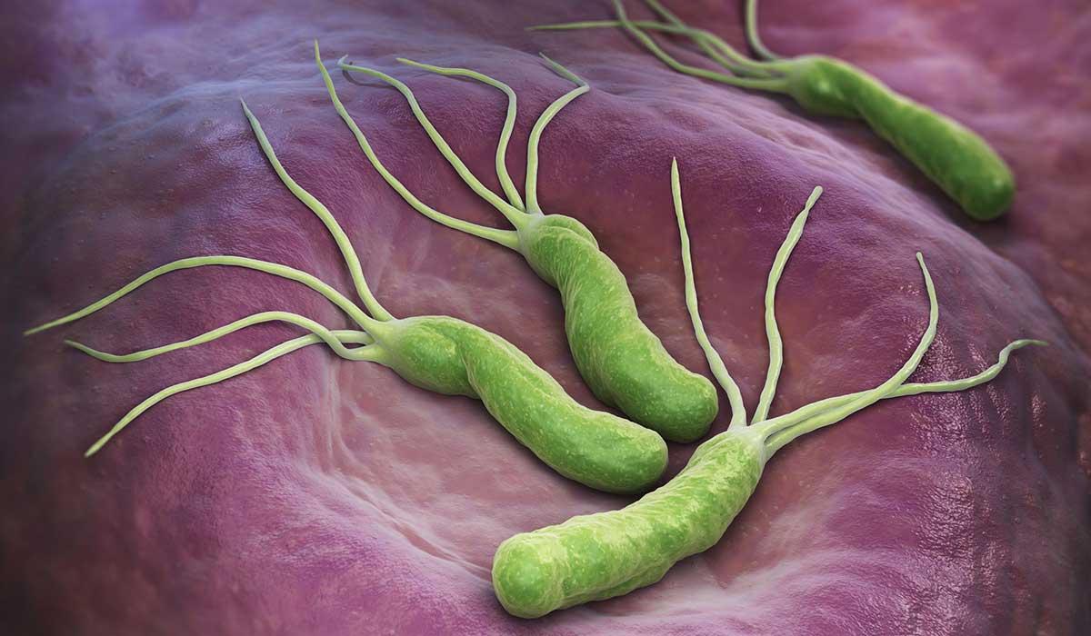 cuidado con esta peligrosa bacteria