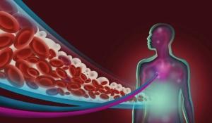 diferencia entre colesterol y triglicéridos