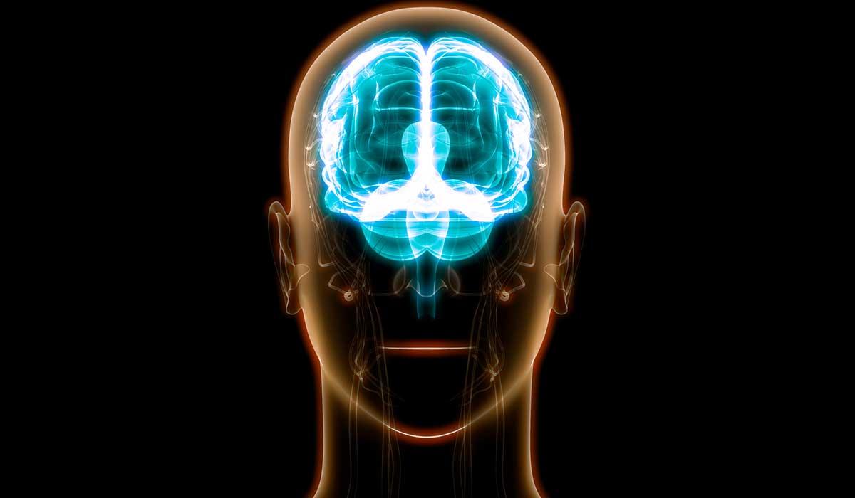 4 pasos para mantener el cerebro y la mente más sanos