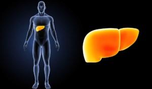 síntomas del hígado graso