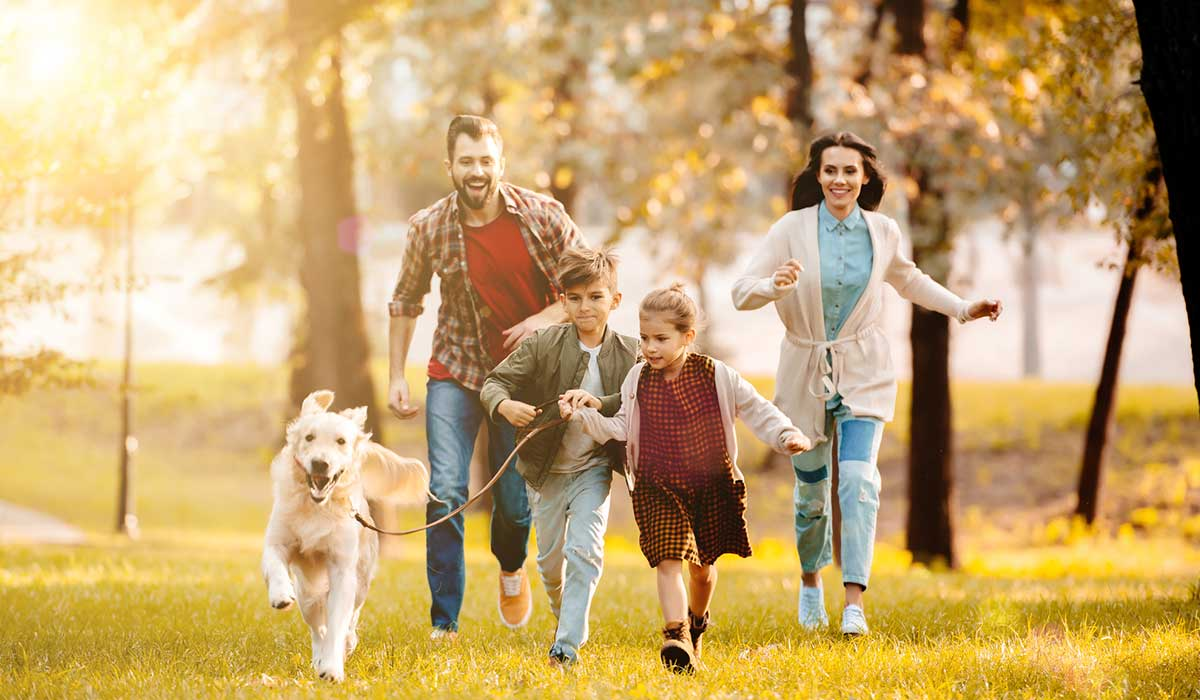 Resultado de imagen para 12 hábitos de todas las familias sanas