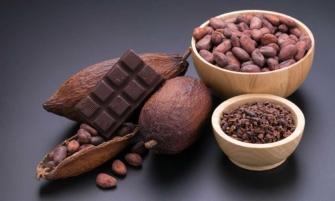 Tabasco el origen del cacao