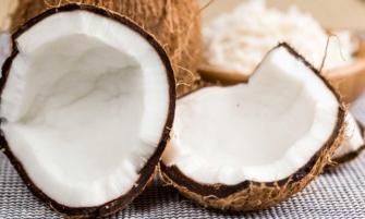 receta de ceviche de coco