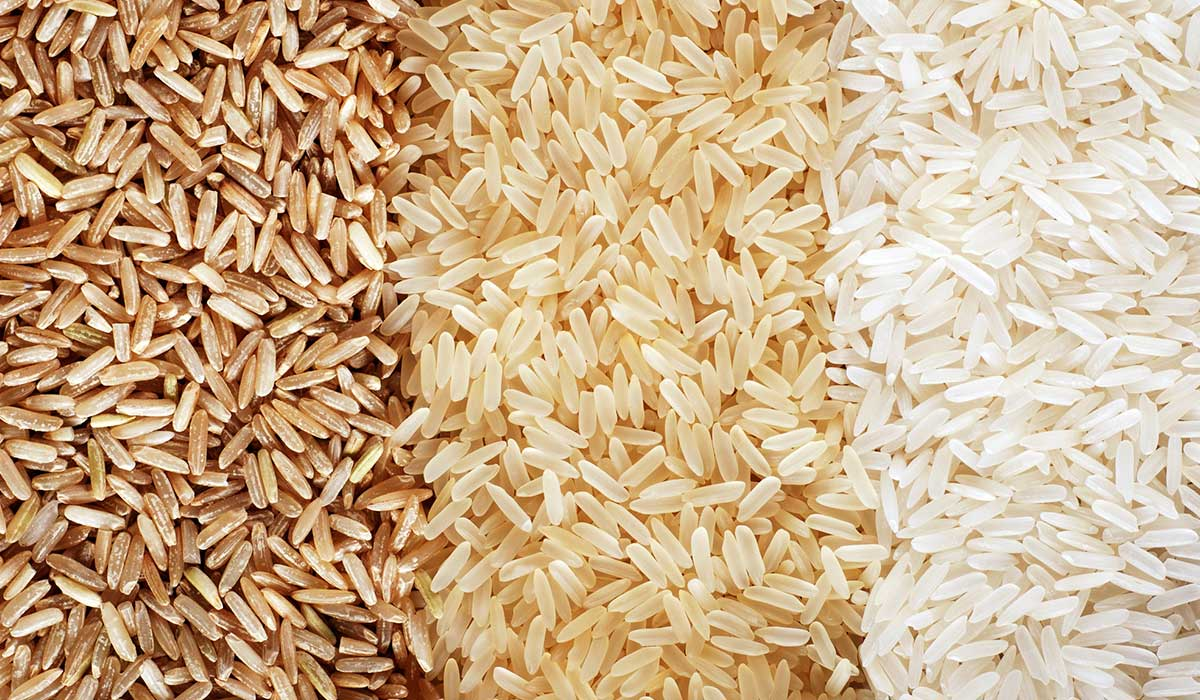 arroz integral o blanco