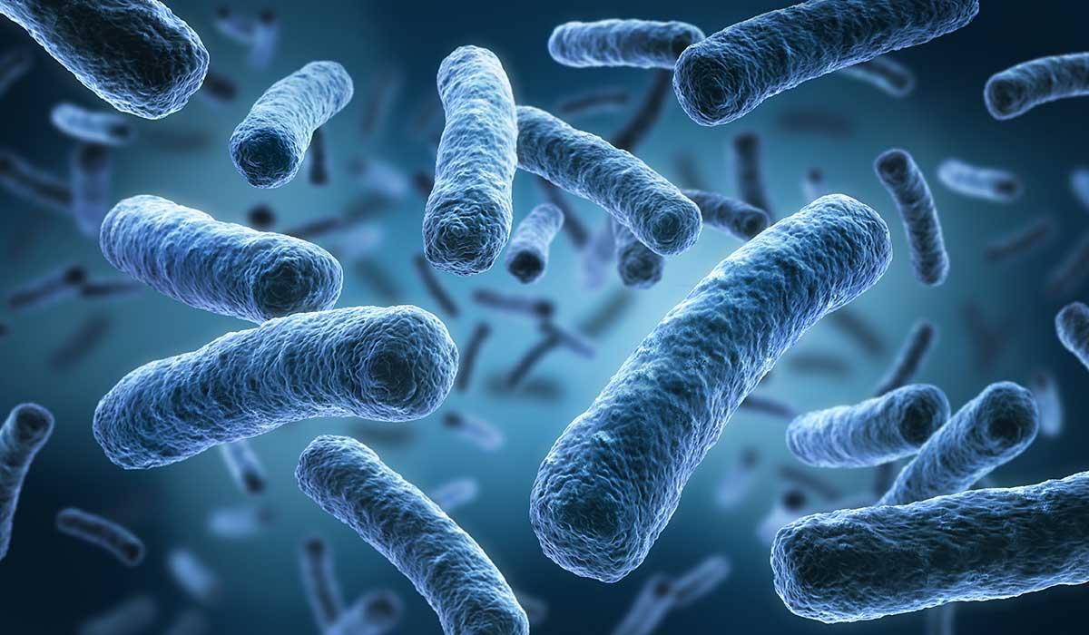 tips para evitar la resistencia de los antibióticos