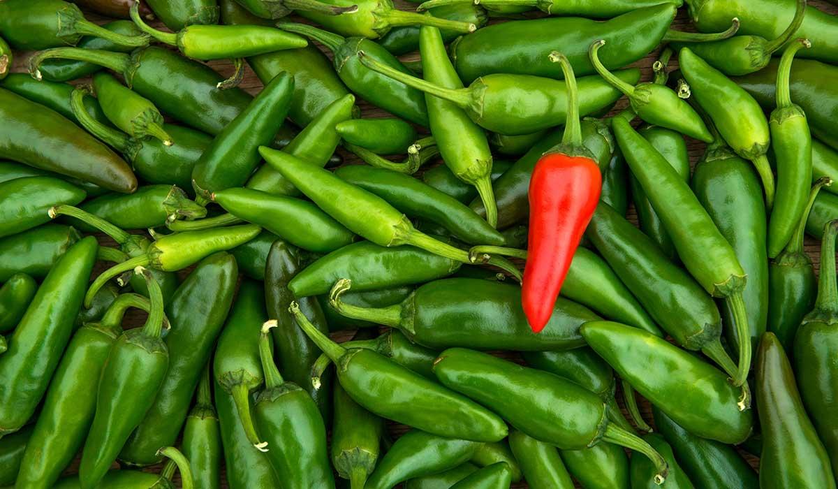 los chiles disminuyen el riesgo de ataque cardiaco