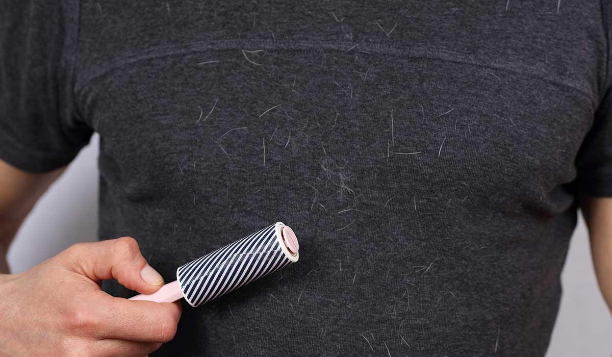 Utiliza este truco para eliminar el pelo de mascotas de tu ropa
