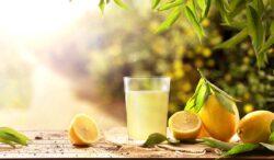 el limón tiene muchos beneficios para tu salud