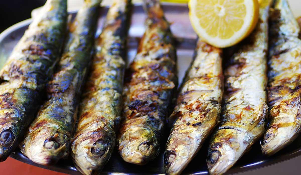 sardinas para obtener omega 3