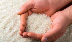 agua de arroz para un cutis de porcelana