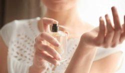 ¿sirven los perfumes de feromonas?