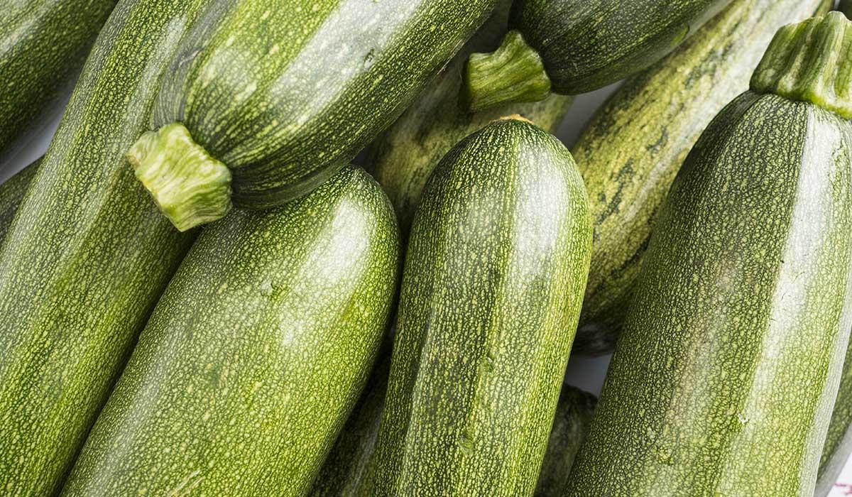 alimentos que queman grasa y fortalecen tu sistema inmune