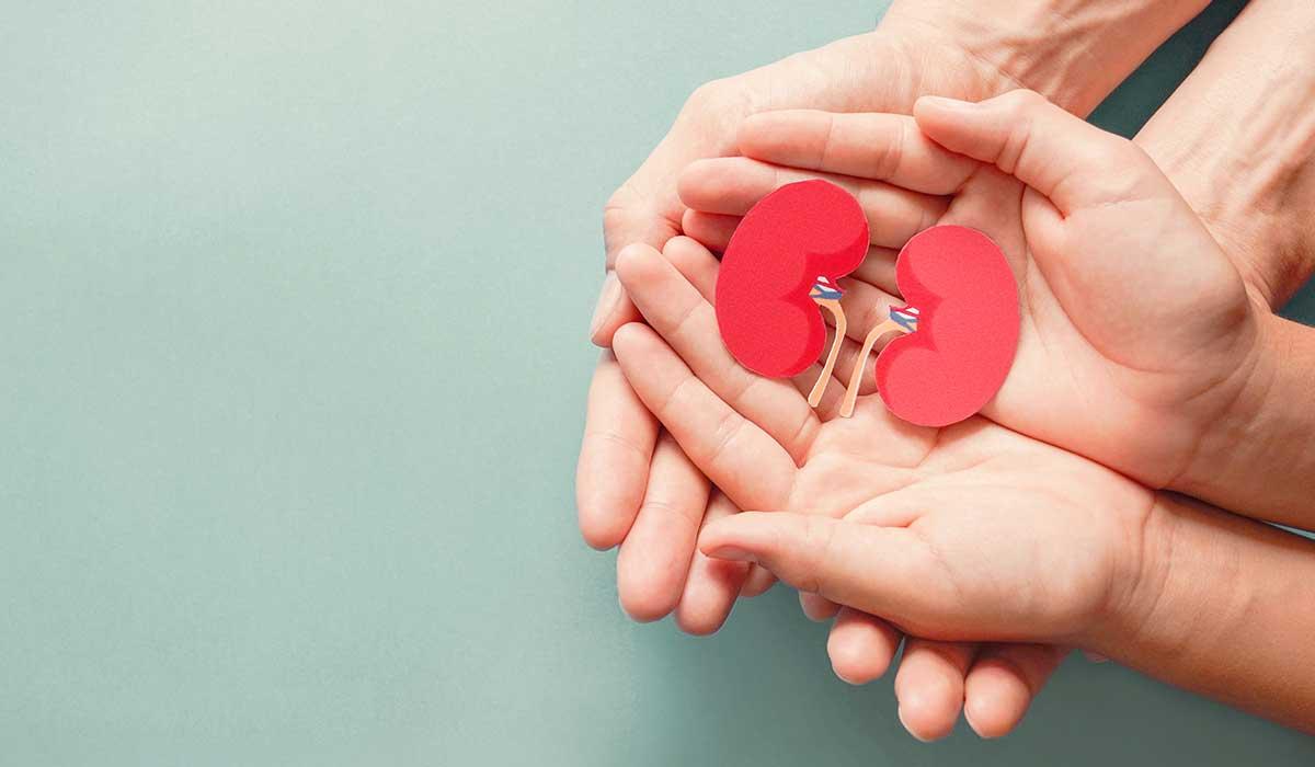el problema de la donación de organos en México