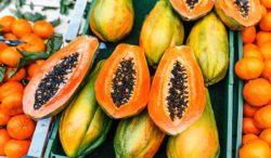 alimentos con poder supercurativos