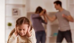 hechos sobre la violencia doméstica