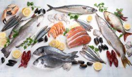 5 razones para aumentar la ingesta de mariscos