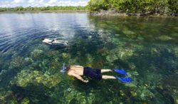 opciones de ecoturismo en México