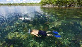 ¿Amante del ecoturismo? Conoce estas tres increíbles opciones