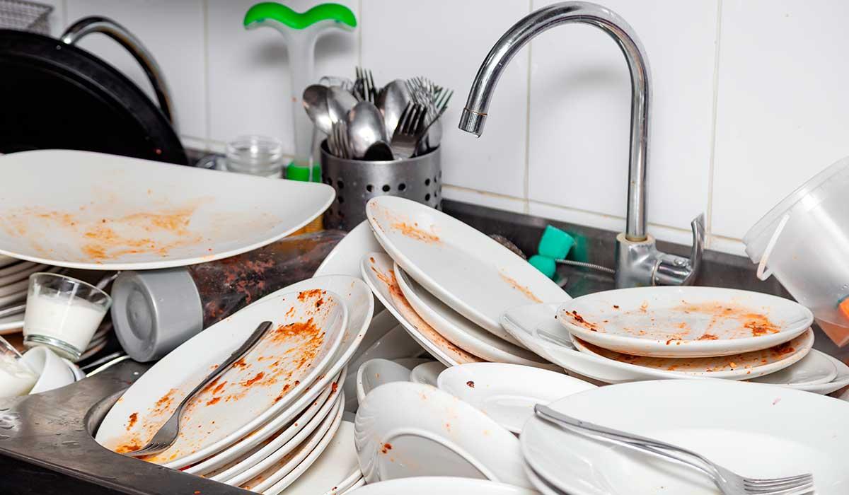 evita que las plagas lleguen a tu cocina