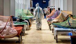 la peligrosa pandemia del hongo negro en la India